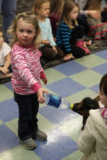 DAYCARE LIBRARY GOATS MATCH 26 2013 018