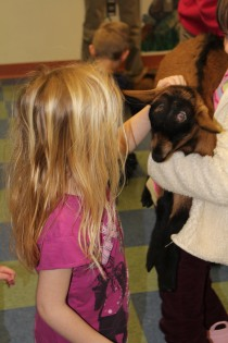 DAYCARE LIBRARY GOATS MATCH 26 2013 053