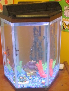 Fish Tank New location June 12 2013 001